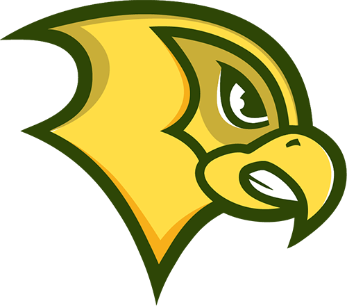 Felician Golden Falcons